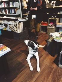 independentbookstore